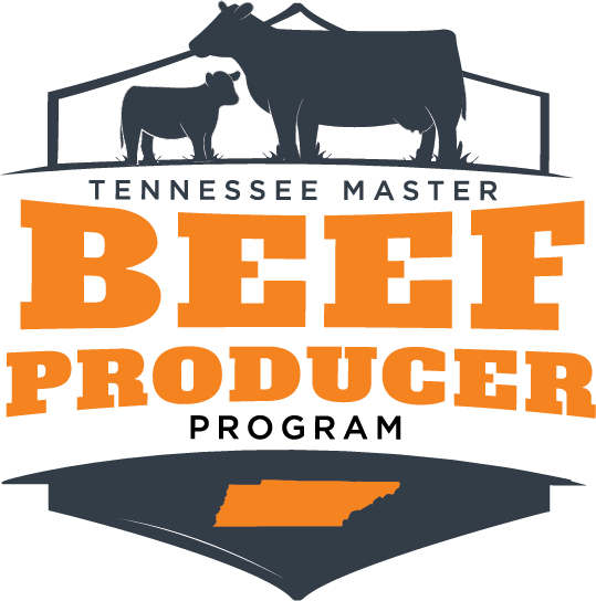 Master Beef Producer
